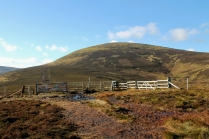 The Cheviot from the east