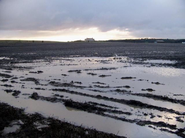 mud 1