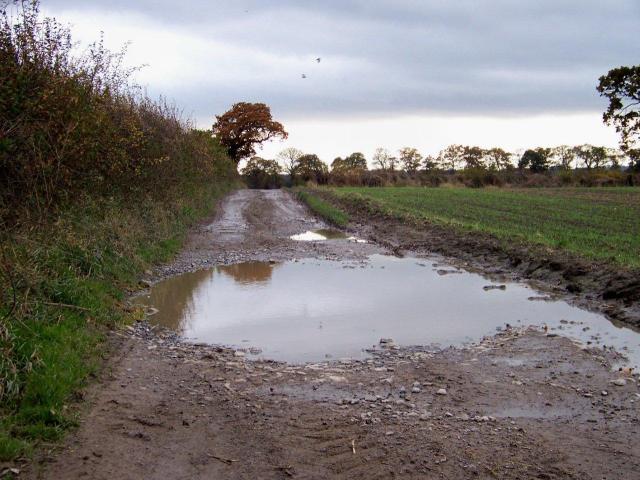 mud 6