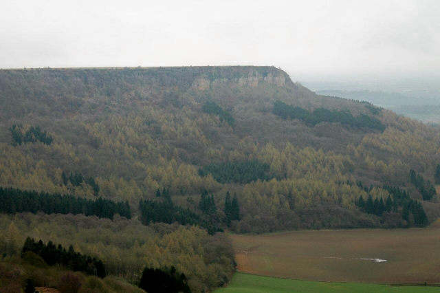sutton bank 4