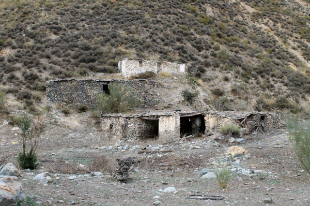 Guadalfeo 15