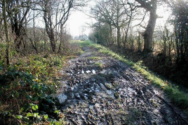 Some parts of the Minster Ways are muddy – like this
