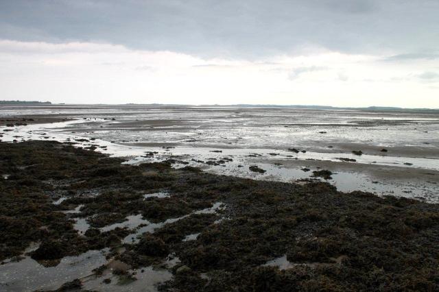 Lindisfarne 2