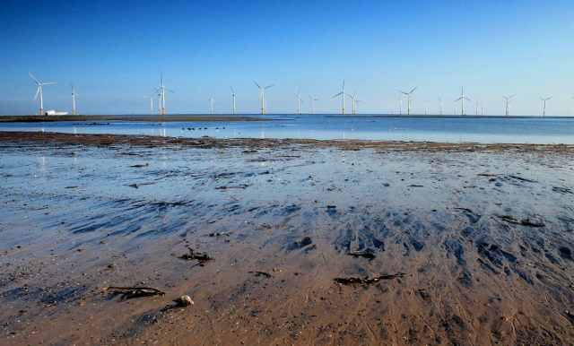 south gare 18
