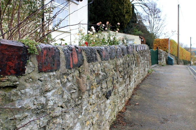 We are still out in the country, but this wall surrounding a cottage garden has been capped with what appears to be furnace slag. More remnants of the Middleton Tyas and Merrybent copper-mining industry?