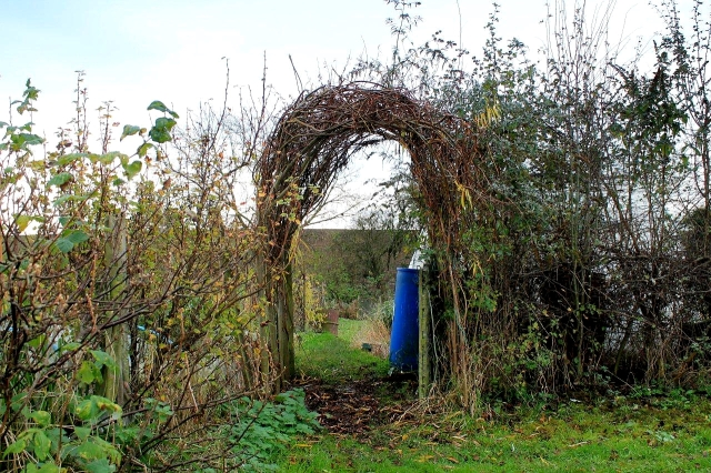 And finally. Back to the allotment for a sit-down at the close of another dank and dismal November day . . .
