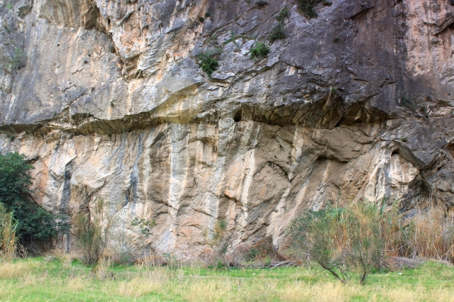 The base of the cliff, showing the end of a phreatic tube – in the centre of the picture – emerging from a bedding plane in the limestone. Phreatic tubes are caves that formed deep beneath the water table, the water dissolving their sides and roof equally, hence their circular or oval cross-section